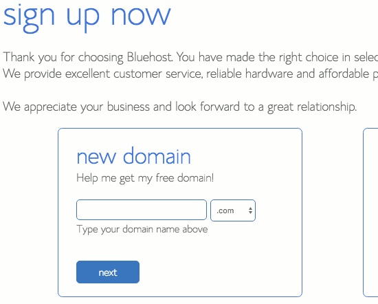 Choose a domain name and make it unique