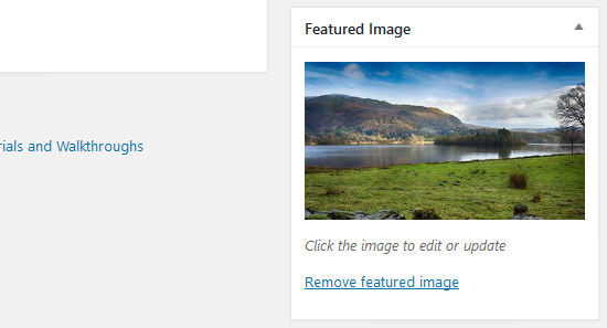 Set featured images in WordPress