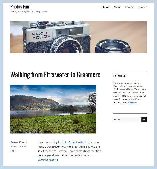 View your WordPress website