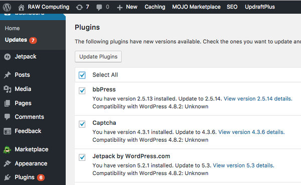 Update WordPress plugins
