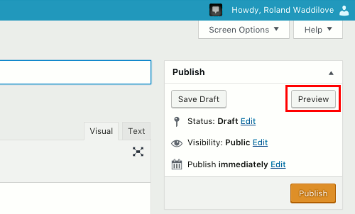 Preview a WordPress post before publishing it to check for errors