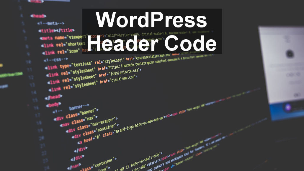 Place code in the header of web pages on your WordPress site
