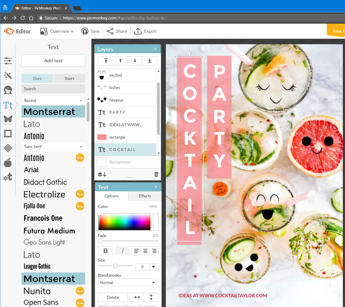 Editing an image in a browser at the PicMonkey website