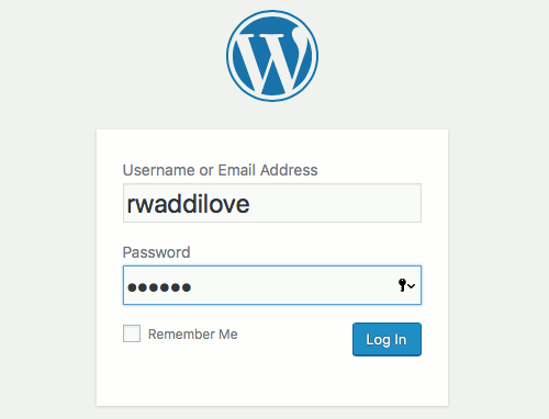 Log into WordPress website