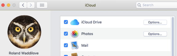 Enable iCloud Drive in System Preferences on the Apple Mac
