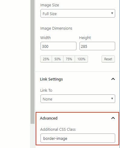 Adding custom CSS code to an image in WordPress