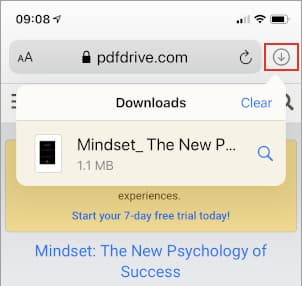 Downloads list in Safari browser on the iPhone