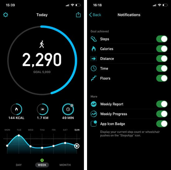 StepsApp pedometer app for the iPhone