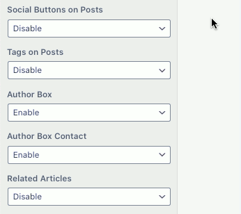Author box options in a WordPress website theme