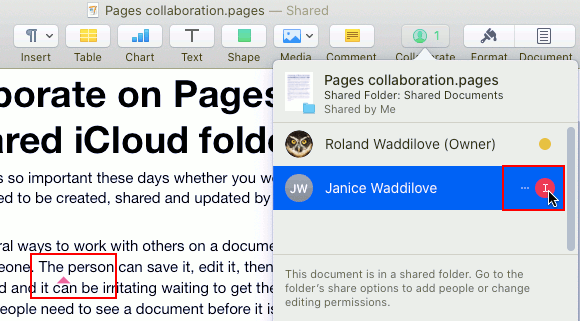Collaboration on a Pages document in an iCloud shared folder on the Apple Mac