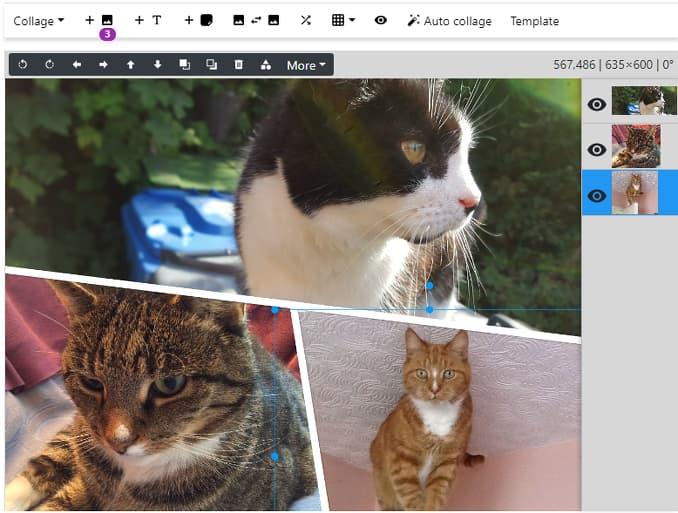 Photo Collage maker website