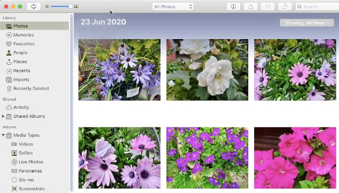 The Photos app on the Apple Mac
