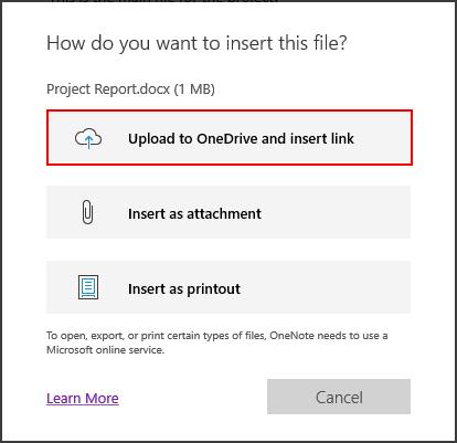 Insert a file in a OneNote note