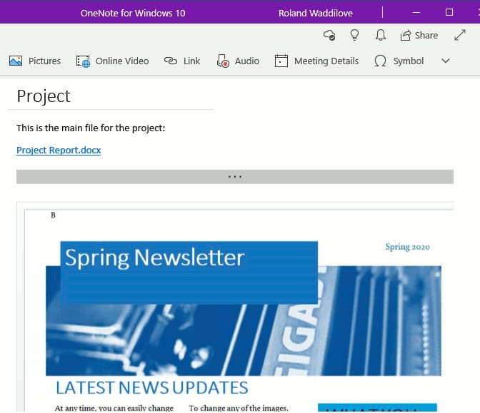 A OneNote note with an embedded document