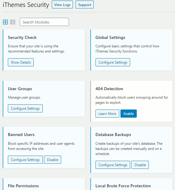 Settings in the iThemes security plugin for WordPress websites