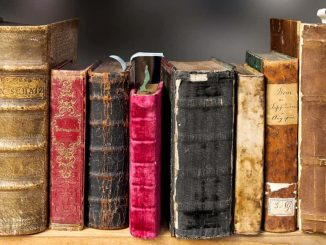 Books on a bookshelf for people that like reading